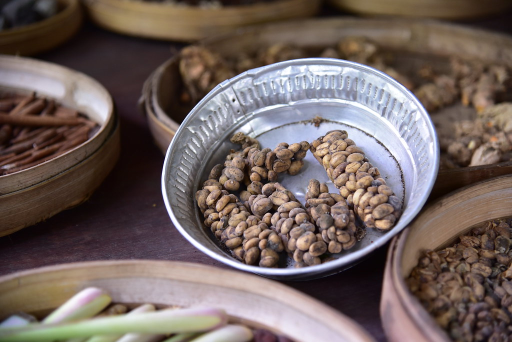 Pro milovníky kávy a cestovatele: Nejlepší suvenýr z Bali je cibetková káva